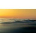 Ocean 047